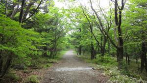 001mt_takahara